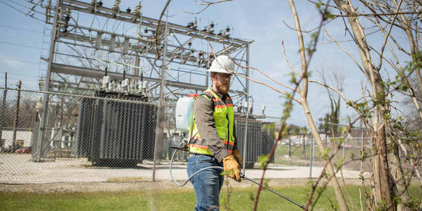 Electrical Hazard Recognition for Substation Grounds Maintenance & Herbicide Applicators Workshop