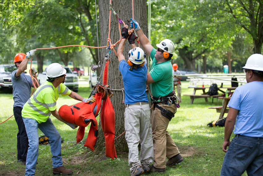 Home Acrt Arborist Training