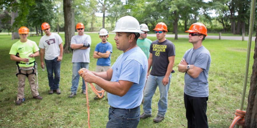 search arborist training jobs